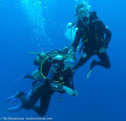 BD-090406-St-Johns-4062818-Homo-sapiens.-Linnaeus.-1758-[Diver].jpg